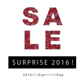 SURPRISE 2016!