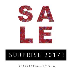 SURPRISE 2017!