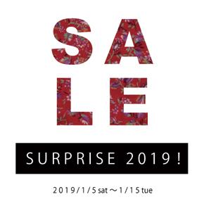 SURPRISE2019!