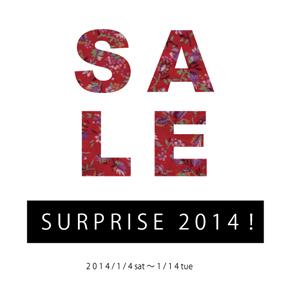 SURPRISE 2014!